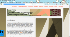 infrastructure and pedagogy webtext